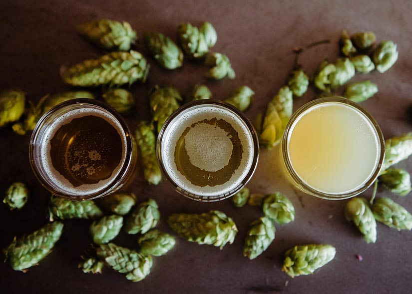 Cómo se cata una cerveza artesanal